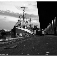 The Fisherman's Friend HM 423 Hirtshals Havn - Jammerbugten - #Skagen_Nordfriesland